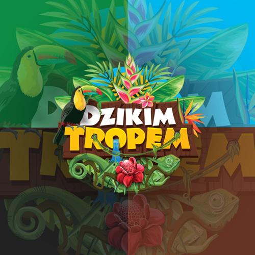 Dzikimtropem.pl – logo, strona internetowa, wizytówki, koszulki.